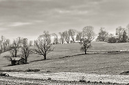 A black and white view of farm fields with a dusting of snow in Goshen, N.Y., on Dec. 1, 2020.