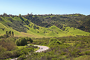 Runners on a Paved Trail at Aliso and Wood Canyons Wilderness Park