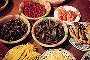 Dried cicadas are one of many foodstuffs that may be purchased in the night food market in the village of Menghan, along with pig brain, pig feet, chicken feet, dried frogs, and fish heads. Jinhong, China. (Man Eating Bugs page 100 Bottom)