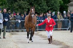 Brakewell Jeanette, (GBR), Lets Dance<br /> First Horse Inspection - Mitsubishi Motors Badminton Horse Trials <br /> Badminton 2015
