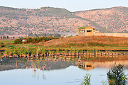 Israel, Hula Valley, Lake Agamon Bird sanctuary nature reserve The hide used bu bird watchers