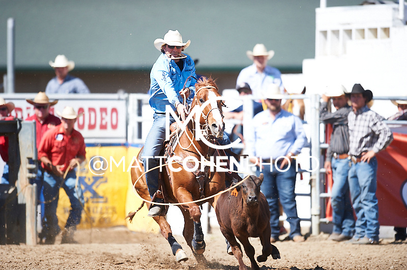 Tie-down roper Stetson Vest of Childress, TX competes at the Redding Rodeo in Redding, CA<br /> <br /> <br /> UNEDITED LOW-RES PREVIEW<br /> <br /> <br /> File shown may be an unedited low resolution version used as a proof only. All prints are 100% guaranteed for quality. Sizes 8x10+ come with a version for personal social media. I am currently not selling downloads for commercial/brand use.