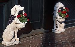 Two ceramic dog figurine flower pot holders outside entrance. CITY URBAN STOCK PHOTO