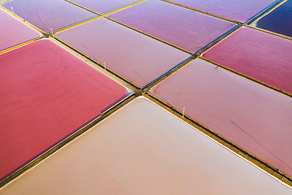 Salt ponds which have turned pink as a result of the pigment of a bacteria called Halobacterium which thrive in the high salinity environment. The salt made here is shipped throughout Europe. Image made near Santa Pola, Spain.