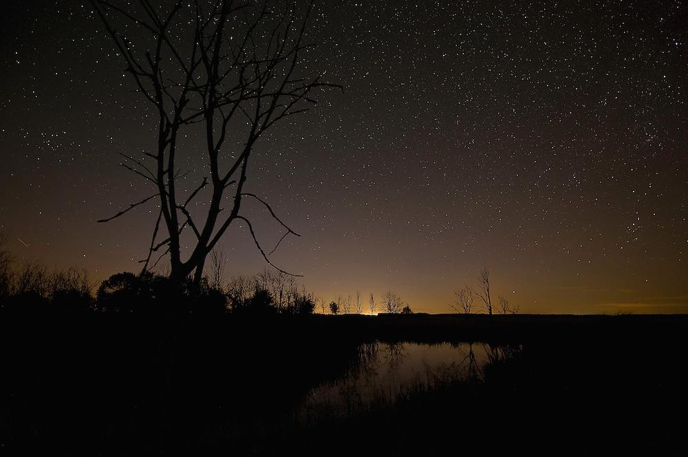 Hortobagy landscape with starnight, Hortobagy National Park, Hungary