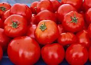 Fresh Alaska grown tomatoes being sold by Dinkel's Veggies at Saturday Market, Anchorage, Alaska.