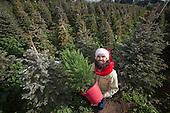Scott Martin founder of Christmas Tree Rental Service