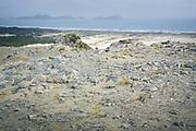 Looking from the Big Sandhill, The Southern Circuit, Stewart Island / Rakiura, New Zealand Ⓒ Davis Ulands | davisulands.com