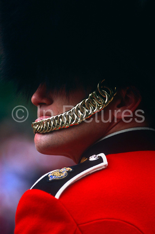 A guardsman of an unknown regiment, stands on ceremonial duty in the Mall during celebrations of the Queen's official Golden Jubilee in June 2002. The soldier in resplendent red tunic and the controversial bearskin is an iconic emblem of Britain's armed forces during official events. But the officer may be a Grenadier or a Welsh Guard who share similar uniforms and perform similar duties in London. We see his chinstrap in polished gold leaf and his rank insignia on his epaulette as he stands silent, checking other soldier ranks. The Grenadier Guards (GREN GDS) is the most senior regiment of the Guards Division of the British Army, and, as such, is the most senior regiment of infantry. The Grenadier Guards celebrated its 350th anniversary in 2006.