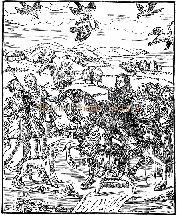 Elizabeth I (1533-1603) Queen of England and Ireland from 1558.  Elizabeth and her attendants out hawking. Queen rides side-saddle, on left man has just released his hawk, while top centre a hawk is bringing down a bird. Woodcut from George Turbevile or Turbeville 'Booke of Faulconrie' 1575