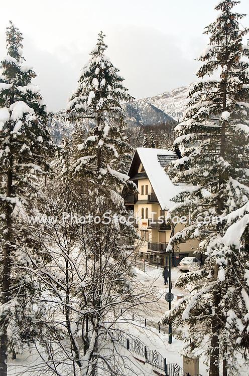 Village in snow. Photographed in Zakopane, Poland