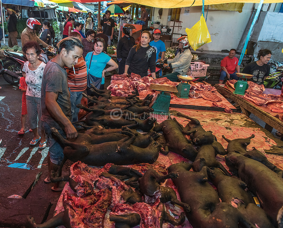 Slaughtered dogs for sale as food at Tomohon extreme market, Minahasa, north Sulawesi, Indonesia.