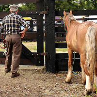 Watching the action in the ring at the annual Spancilhill Horse Fair on Tuesday.<br /> Photograph by Yvonne Vaughan