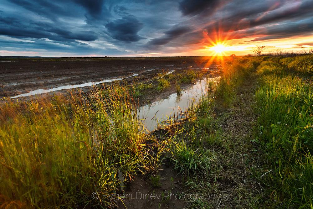 Amazing sunset at muddy place