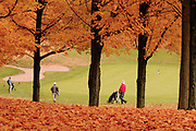 Golfers, from left, Don Campbell, Elmer Vruggink and John Hedberg approach the 14th green at Sunnybrook Country Club.