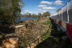 Harefield, UK. 6th April, 2021. Trees felled for the HS2 high-speed rail link alongside the Grand Union Canal. Thousands of trees have already been felled in the Colne Valley where HS2 works will include the construction of a Colne Valley Viaduct across lakes and waterways and electricity pylon relocation.