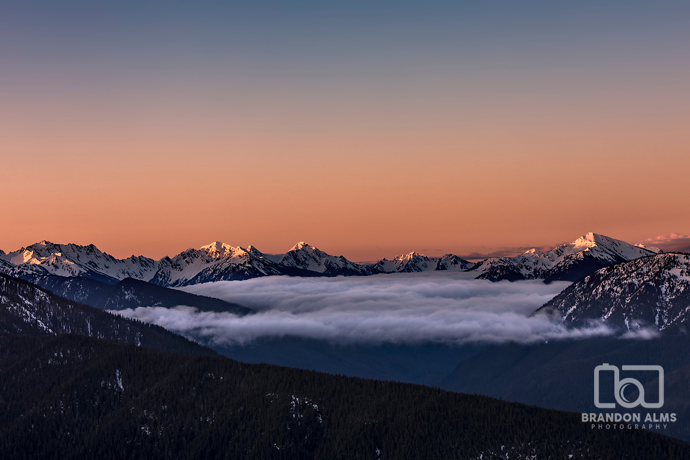 Sunrise in the Olympic Mountains at Hurricane Ridge Washington. Photo by Brandon Alms Photography