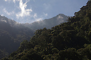 Cloud mountain forest near Marcapata next to the Interoceanic Highway