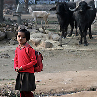 Asia, India, Khajuraho, A young girl heads to school in Khajuraho, India.
