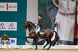 Hansen Sune (DEN) - Blue Horse Romanov<br /> JBK Horse Show Odense 2010<br /> © Hippo Foto - Leanjo de Koster