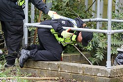 © Licensed to London News Pictures. 07/11/2018. London, UK. British Transport Police search team carries out the search near Finchley Road and Frognal overground station. A man in his teens was stabbed on Billy Fury Way off Lithos Road in West Hampstead on Tuesday evening. Photo credit: Dinendra Haria/LNP