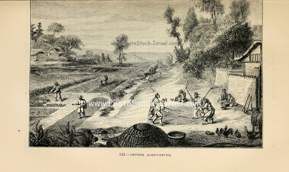 Primitive Chinese Agriculture engraving on wood From The human race by Figuier, Louis, (1819-1894) Publication in 1872 Publisher: New York, Appleton