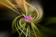 Multicoloured abstract twirling pattern of light in yellow green and white