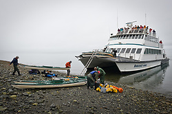 The daily tour boat, Baranof Wind, picks up unidentified kayakers on the beach at Sebree Island in Glacier Bay National Park and Preserve in southeast Alaska. The Baranof Wind drops off and picks up wilderness kayakers at several set locations in the park.