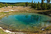 Tide Pool Spring, a small colorful hydrothermal pool at Yellowstone National Park and part of the Midway Geyser Basin along the Fairy Falls trail in Yellowstone, Wyoming.