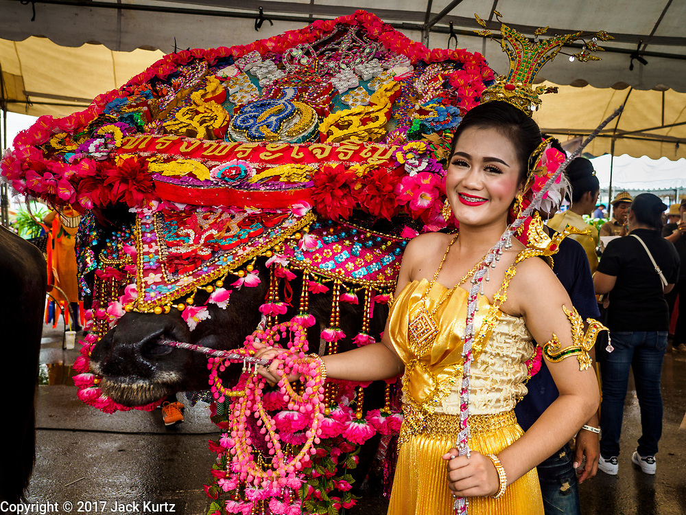 04 OCTOBER 2017 - CHONBURI, CHONBURI, THAILAND: A woman with a buffalo in a fancy costume at the buffalo races. Contestants race water buffalo about 100 meters down a muddy straight away. The buffalo races in Chonburi first took place in 1912 for Thai King Rama VI. Now the races have evolved into a festival that marks the end of Buddhist Lent and is held on the first full moon of the 11th lunar month (either October or November). Thousands of people come to Chonburi, about 90 minutes from Bangkok, for the races and carnival midway.   PHOTO BY JACK KURTZ