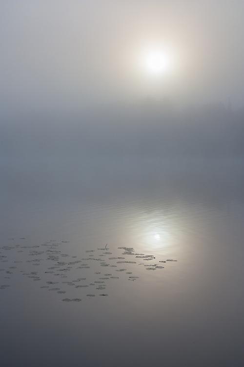 Foggy sunrise on a lake in autumn.