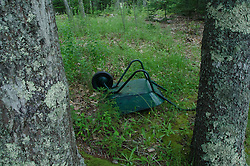 Wheelbarrow, Upper Negro Island, Castine, Maine, US