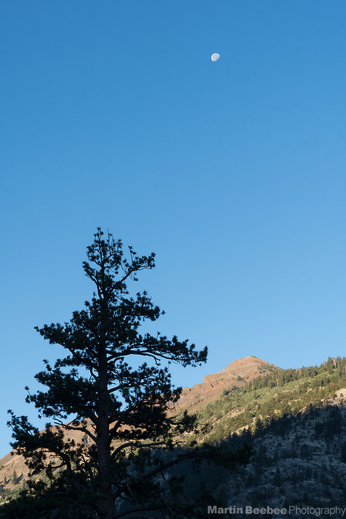 Moon over Sierra Nevada, Hoover Wilderness, Humbolt-Toiyabe National Forest, California