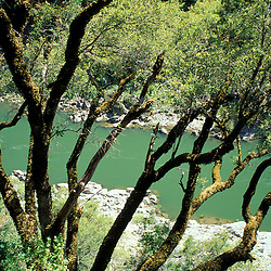 BLM Medford District, OR..Rogue River. Siskiyou Mountains. From Rogue River Trail. June