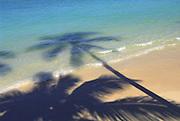Shadow of palm tree on beach<br />