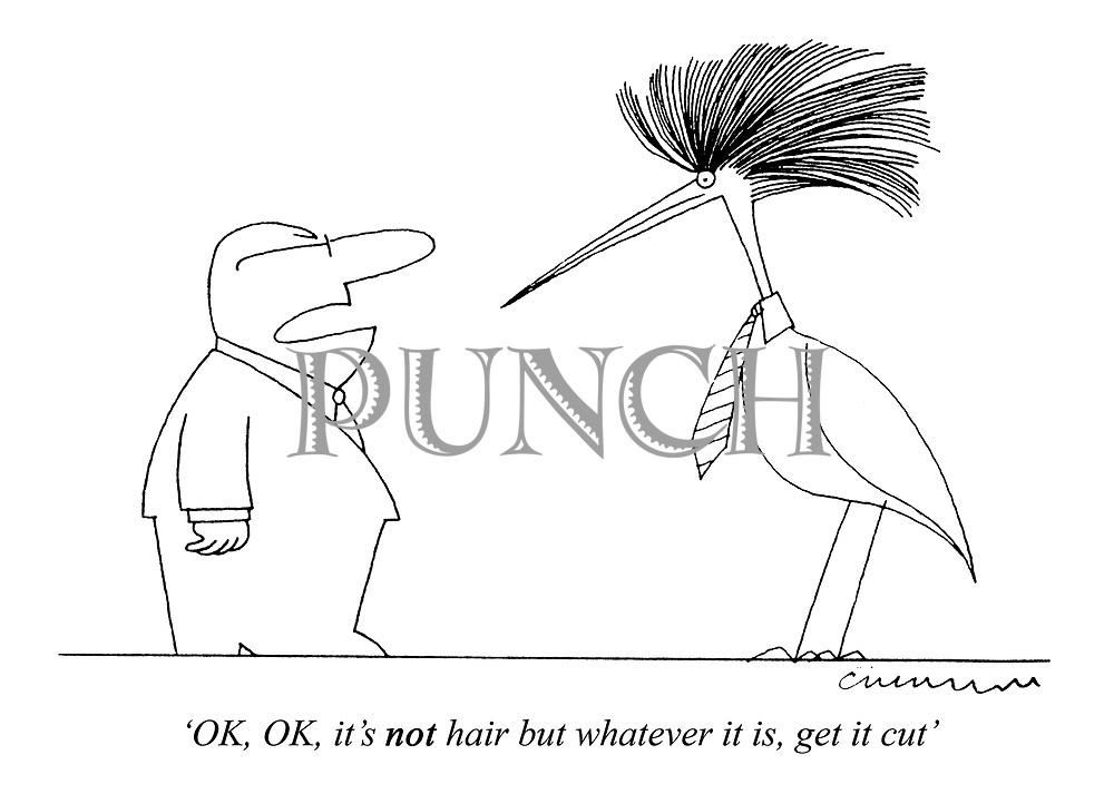 'OK, OK, it's NOT hair but whatever it is, get it cut'