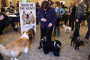 Atmosphere at The133rd Westminister Kennel Club Dog Show Press Conference announcing The Dogue De Bordeaux debut at the Westminister Kennel Club Dog Show held at the Pennsylvania Hotel Sky Top Ball Room on February 5, 2009 in New York City