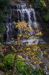 Cascatas no Kitano Odori Gardens, Japão. FOTO: Jefferson Bernardes/Preview.com