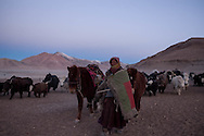 A Rupshu nomad begins an expedition in the early morning hours.