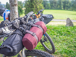 Mountain bike parked by with Tree, Baden-Wuerttemberg, Germany