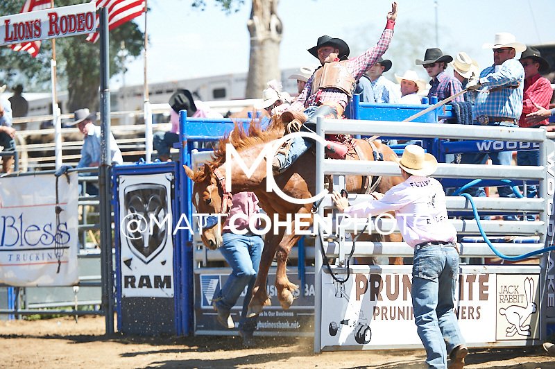 Saddle bronc rider Brock Winn of Ferron, UT rides 8403 at the Woodlake Lions Rodeo.<br /> <br /> <br /> UNEDITED LOW-RES PREVIEW<br /> <br /> <br /> File shown may be an unedited low resolution version used as a proof only. All prints are 100% guaranteed for quality. Sizes 8x10+ come with a version for personal social media. I am currently not selling downloads for commercial/brand use.