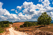 Dusty road to Slivarovo village in Strandzha Mountain in hot summer day.