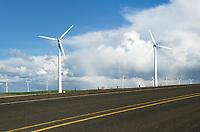 Wind Turbines along two lane highway on the Columbia Plateau, Oregon
