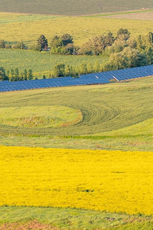 Solar panels on a farm in Oregon's Wallowa Valley.