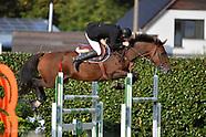 2020-09-nationaal-lrv-paarden-lummen