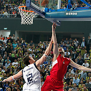 Fenerbahce Ulker's Darjus LAVRINOVIC (L) and Olympiacos's Theodoros PAPALOUKAS (R) during their Euroleague Basketball Top 16 Game 5 match Fenerbahce Ulker between Olympiacos at Sinan Erdem Arena in Istanbul, Turkey, Thursday, February 24, 2011. Photo by TURKPIX