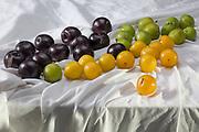 Thirty-six plums