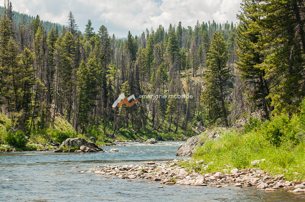 Scenic view on the river Middle Fork of the Salmon River, Idaho.