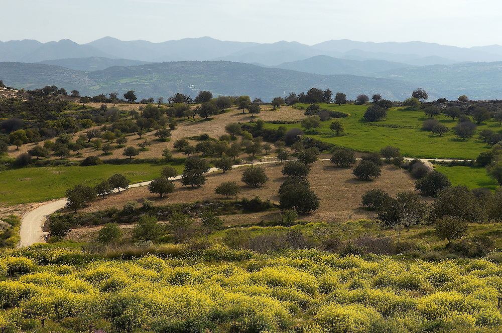 Landscape near Polis, Cyprus