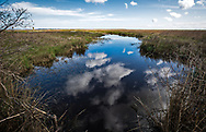 Refection of clouds in waterway in Grassy Bayou  Louisiana, in Terrebonne Parish.